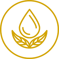 icon_yinyoga